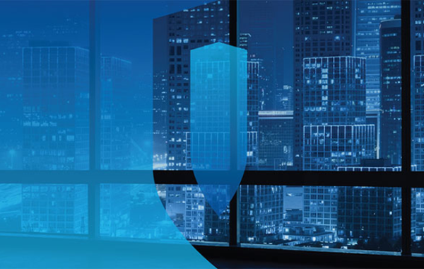 Blue Coat Systems, Inc. (Symantec)